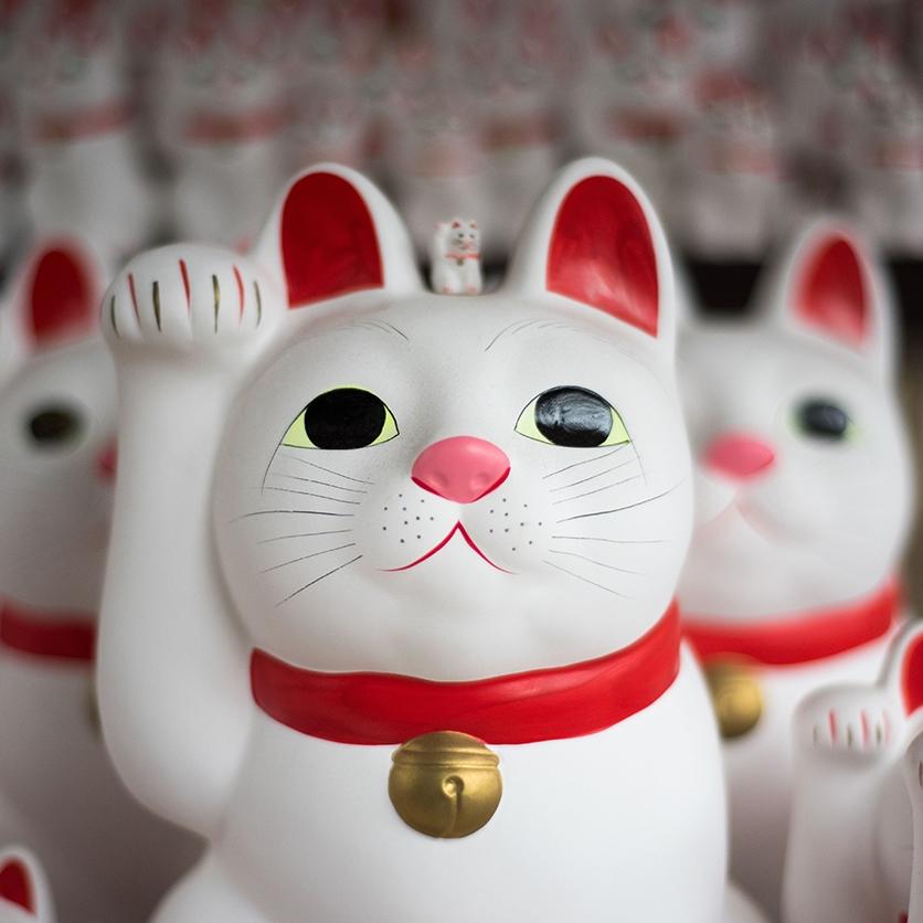 Stage d'été du 5 au 9 août 2019aux Ateliers de l'escalier : Les créatures mythiques japonaises - Dessiner un chat à l'aquarelle