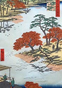 Stage de printemps 2: Art floral et jardin japonais. Du 15/04 au 19/04/2019 pour les enfants de 6 à 8 ans, à Soignies