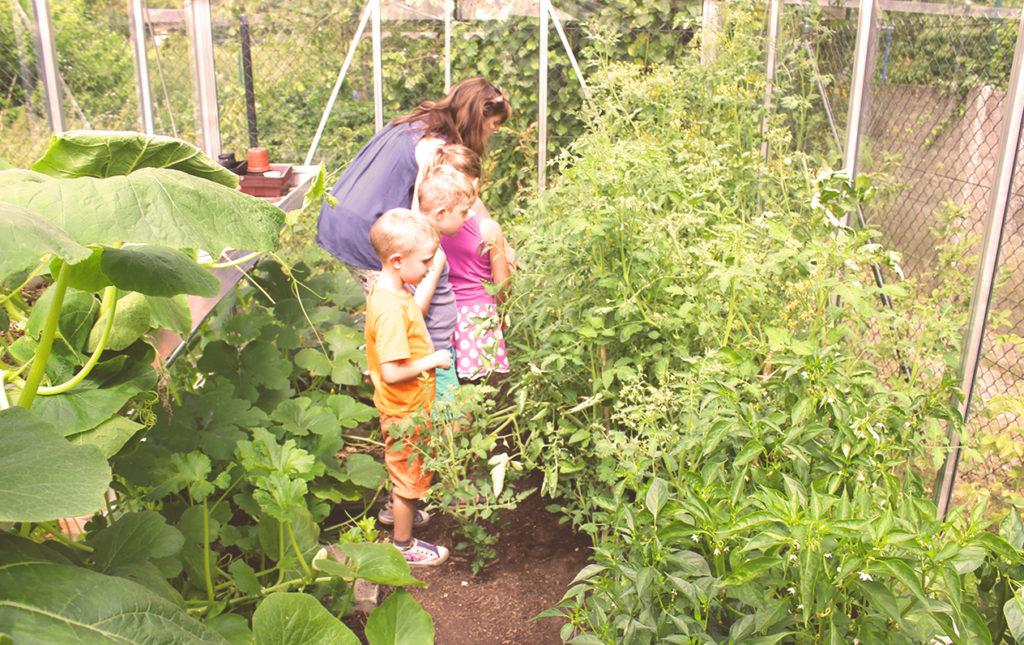 Créations enfants stages cec atelier de l'escalier jardin